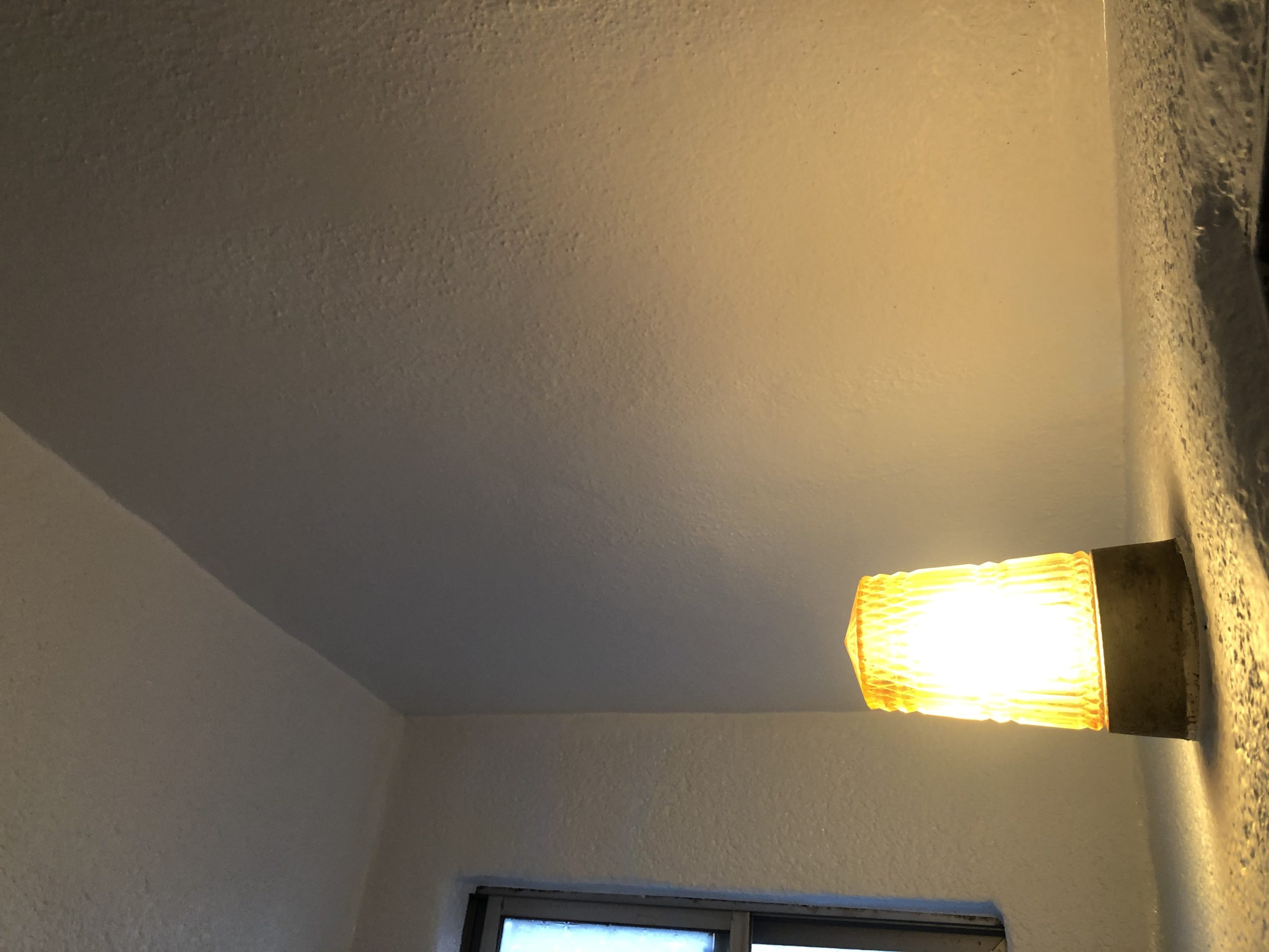 平野区 浴室天井塗装後