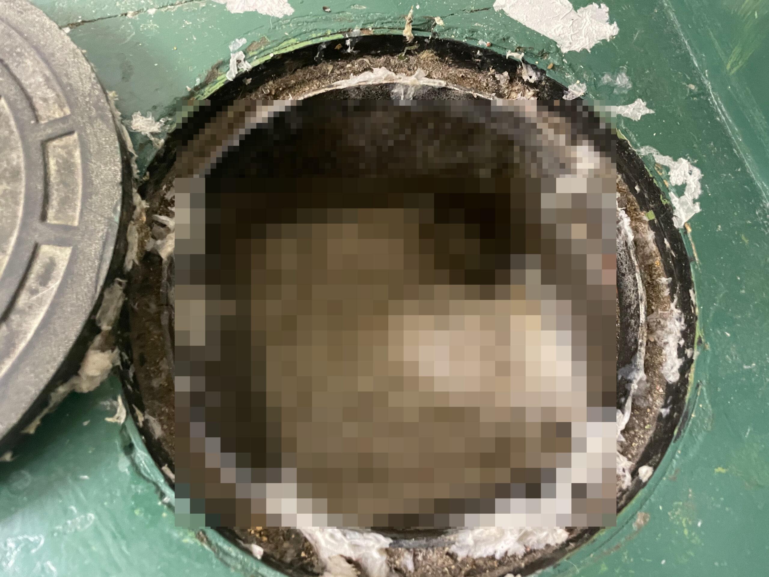 天王寺区 汚水管詰り 施工前①